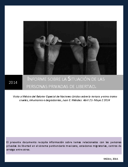 Informe sobre las personas privadas de su libertad presentado al Relator Especial de la ONU