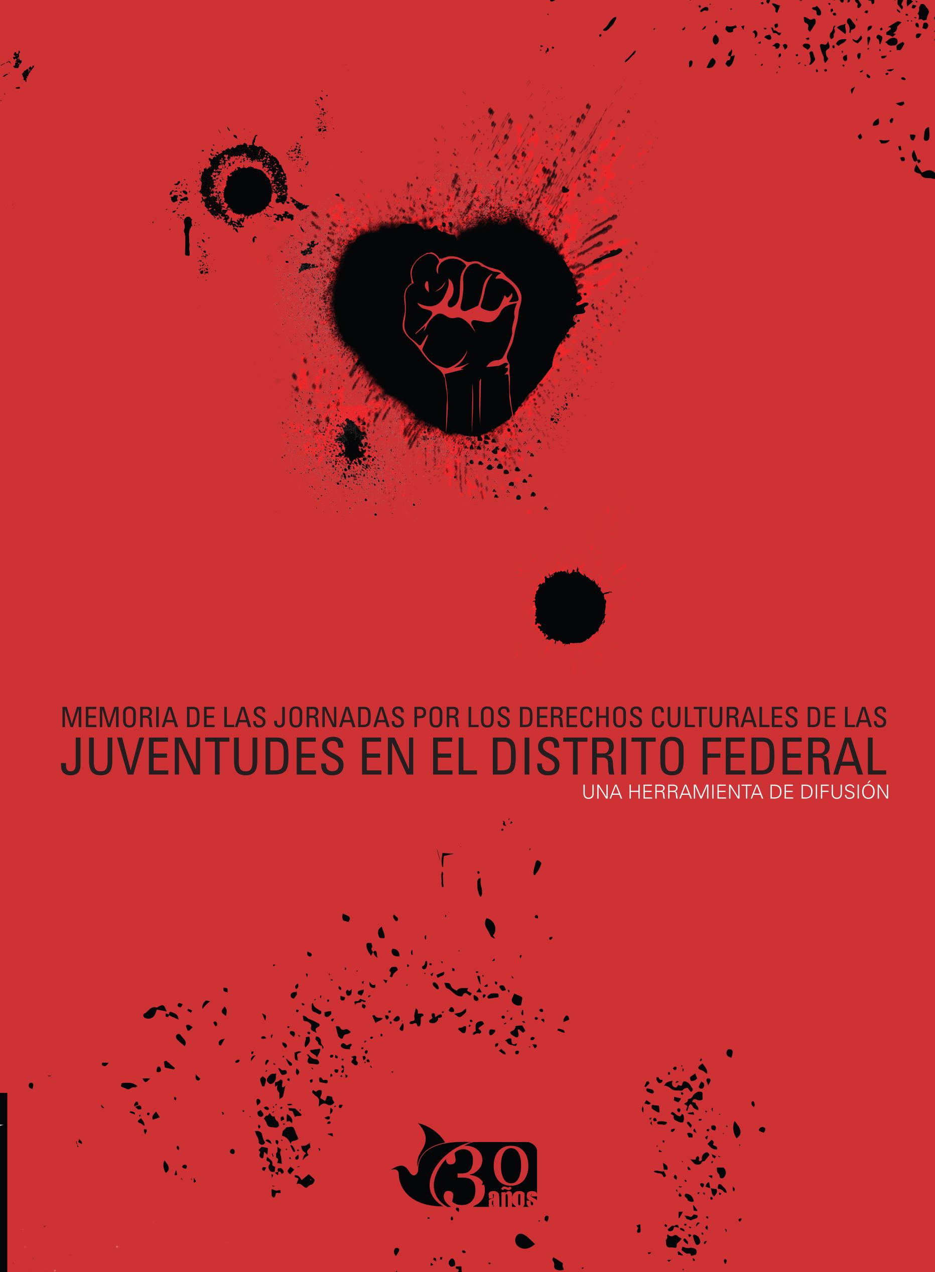 Memoria de las jornadas por los derechos culturales de las juventudes en el Distrito Federal