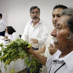 Asamblea de Hopelchén, Campeche.