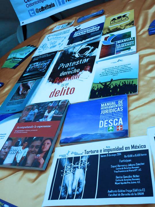 Informes sobre la situación de los DESCA y Juventudes en la Ciudad de México y en México