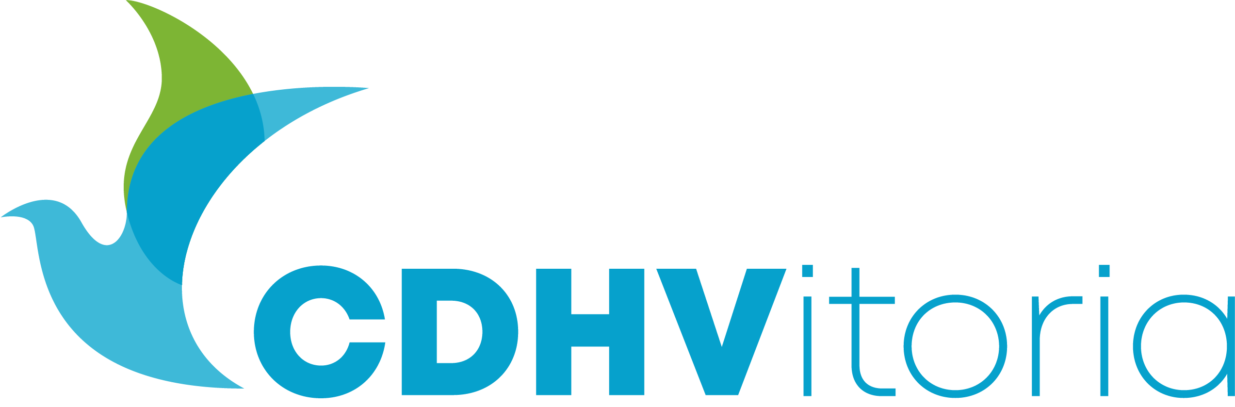 CDHVitoria