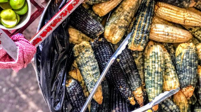 Municipio en defensa del maíz