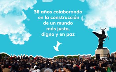 CDH Vitoria, 36 años de transformaciones compartidas