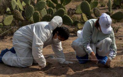 Mecanismo de identificación forense