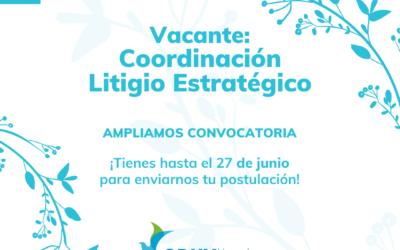 Vacante: Coordinación de Litigio Estratégico